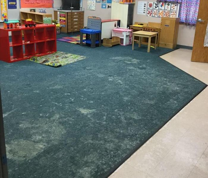 Mold Growth on Carpet at an Elementary School