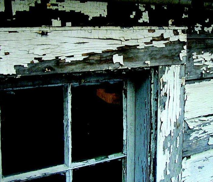 General What You Need To Know About Lead Paint