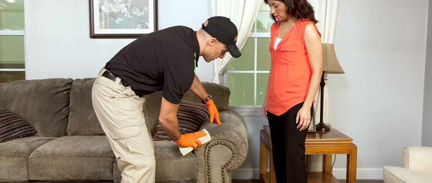 North Richland Hills, TX carpet upholstery cleaning